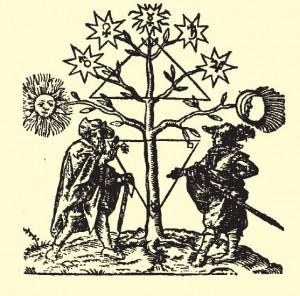 Alcheminis veikalas_planetų medis
